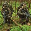 В Україні готується військовий переворот