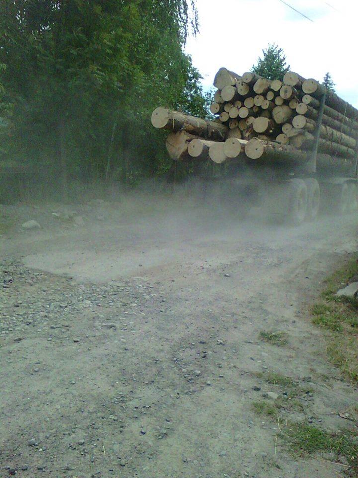 лісовози2